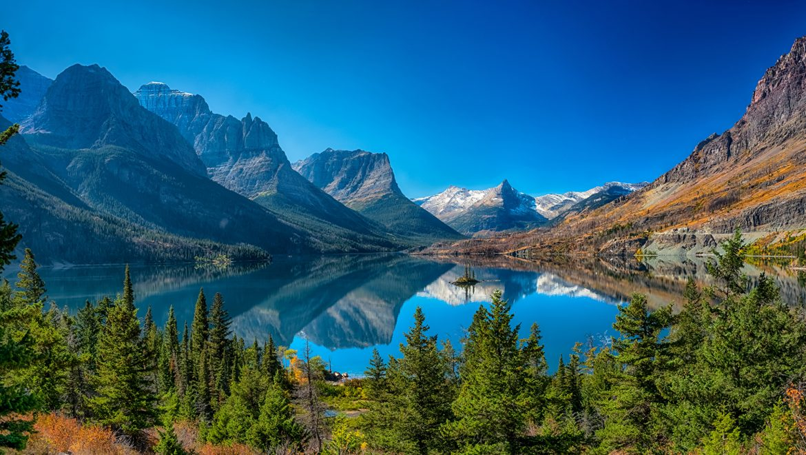 Insider tips to seeing wildlife in Glacier National Park in Montana
